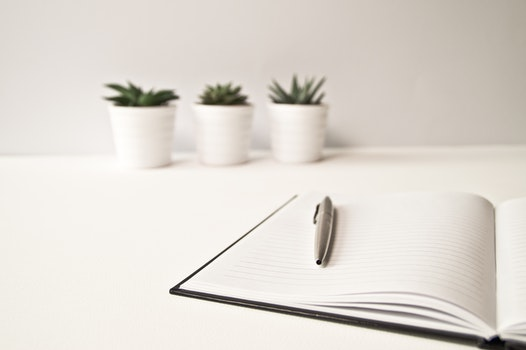 Free stock photo of notebook, table, inside, plants