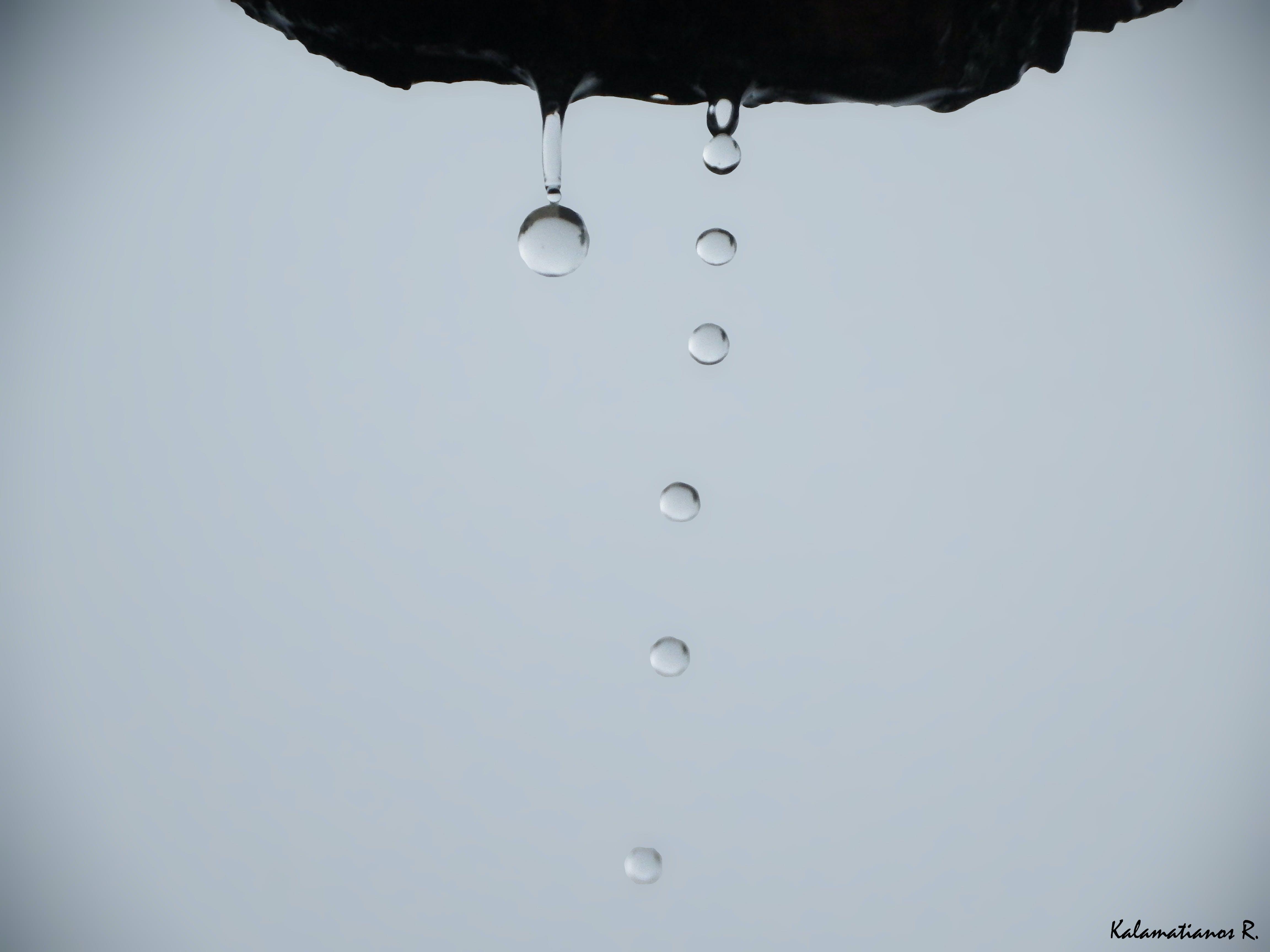 Kostenloses Stock Foto zu regen tropfen, tropfen, wasser, wassertropfen