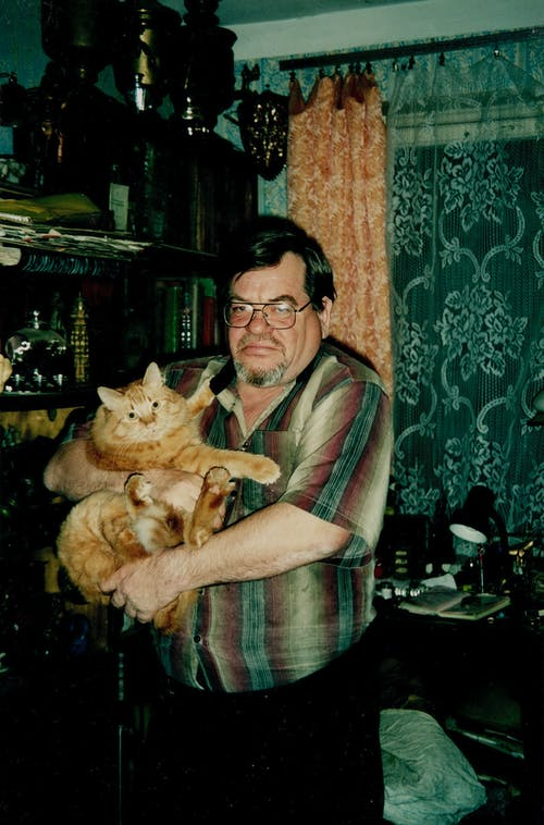 Woman in Brown and Gray Plaid Shirt Holding Orange Tabby Cat
