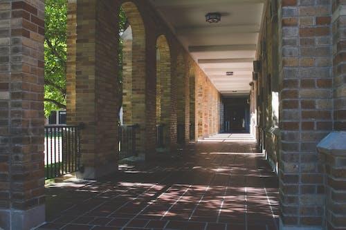 アーチ, ライト, レンガ, レンガの壁の無料の写真素材