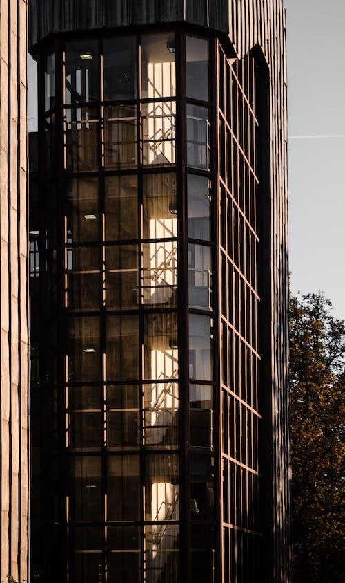 Kostnadsfri bild av arkitektur, brandstege, byggnad
