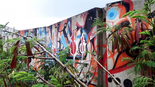 Free stock photo of city, graffiti, forest, wall