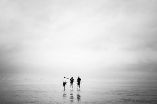 シースケープ, ビーチ, ミストの無料の写真素材