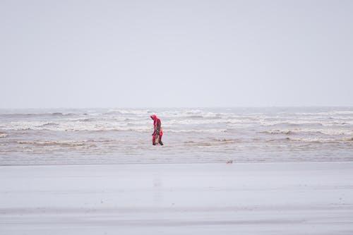 アクション, おとこ, サーフィンの無料の写真素材