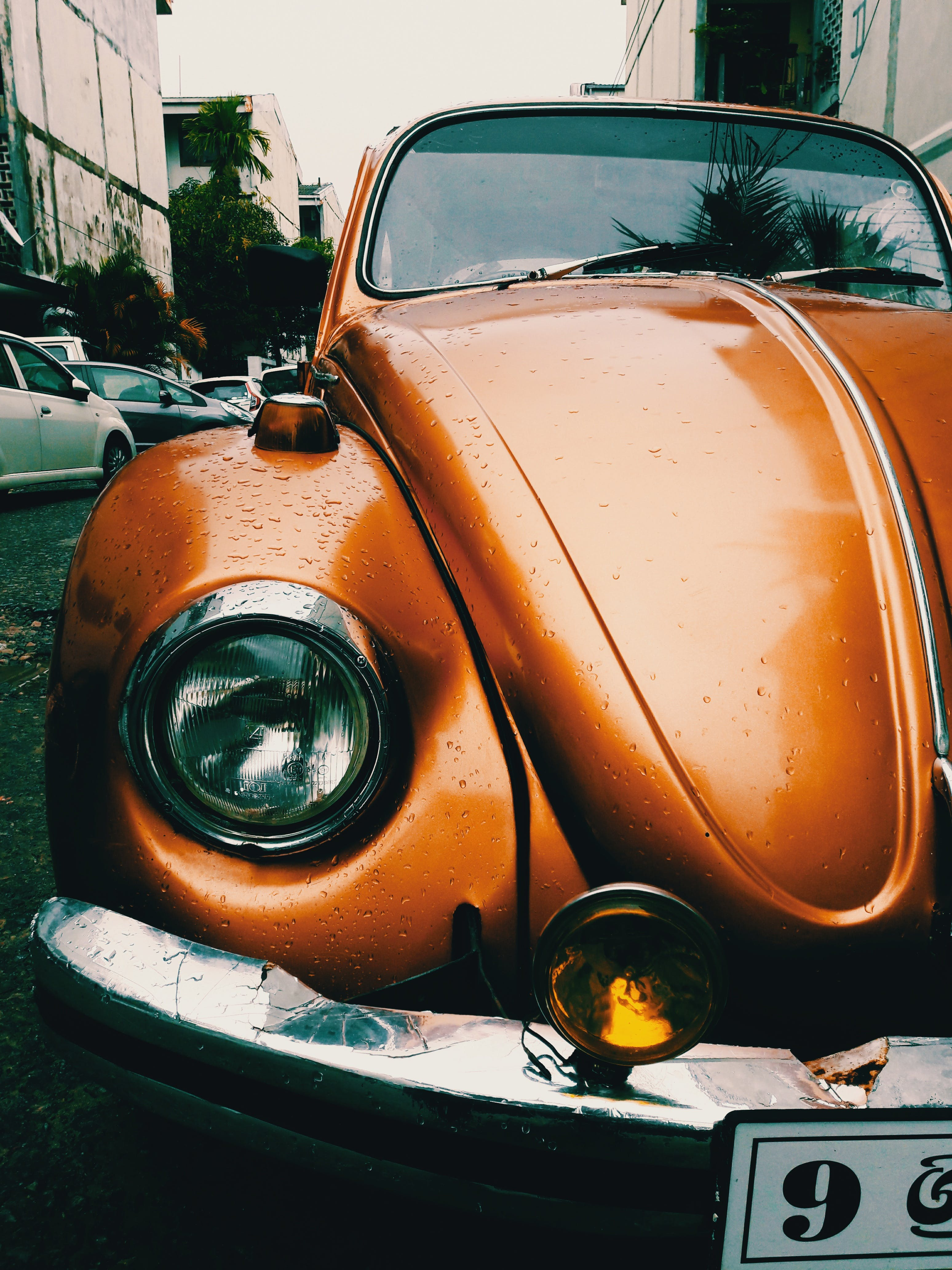 Close-Up Photography of Volkswagen Beetle