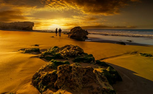 Scenic View of a Beach During Sunset