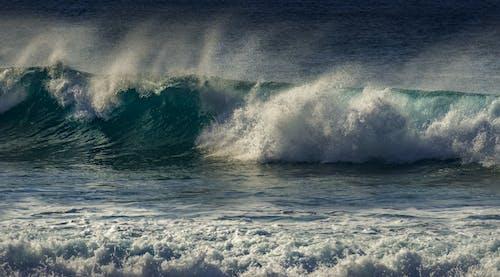 물을 튀기다, 바다, 손을 흔들다의 무료 스톡 사진