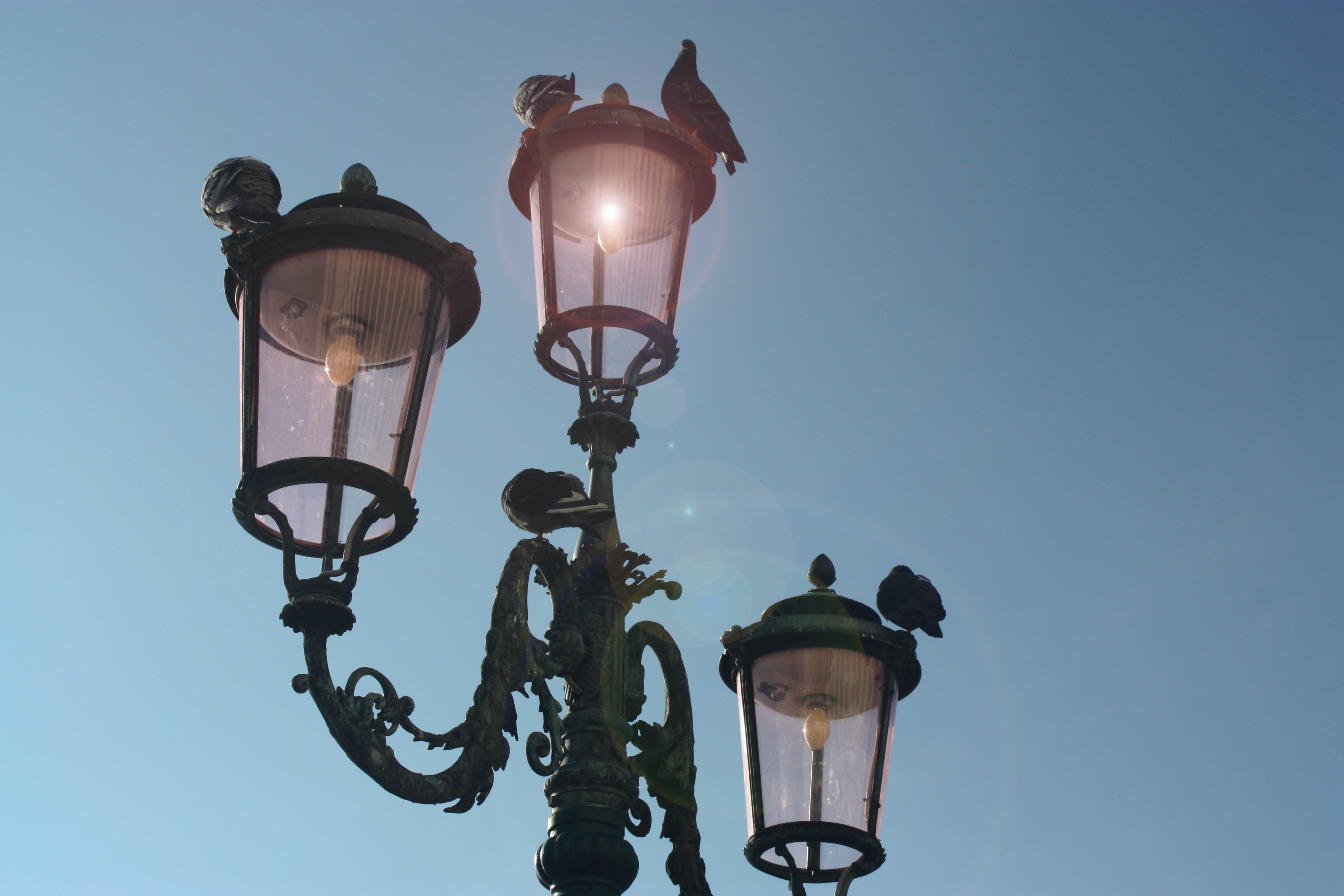 Black 3-light Post Lamp Under Blue Sky