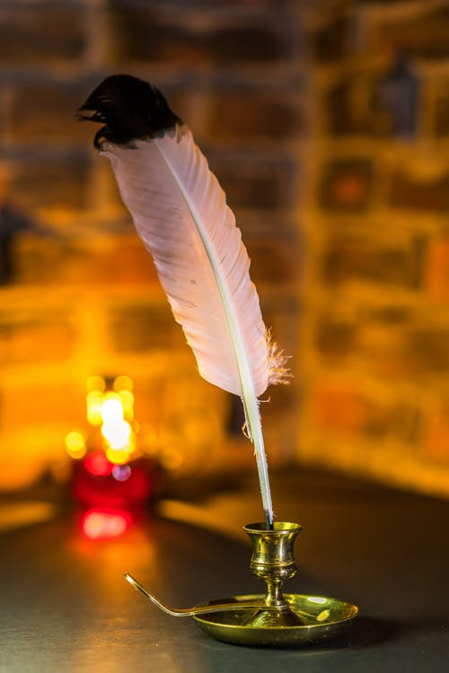 White Feather With Bokeh Lights