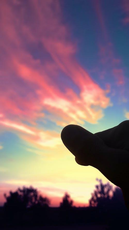 Ảnh lưu trữ miễn phí về bầu trời, cây, đám mây
