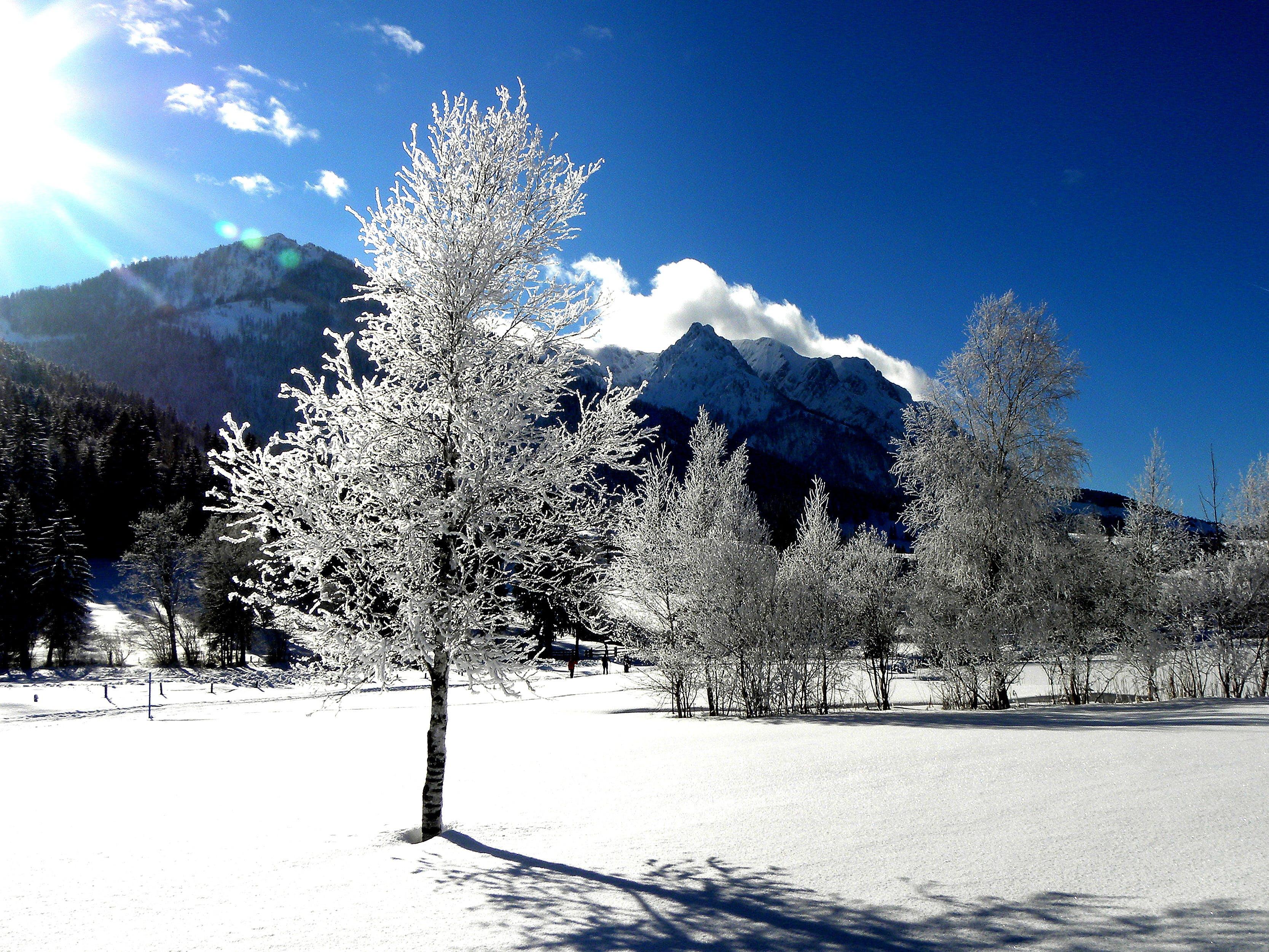 bjerg, blå himmel, dagslys