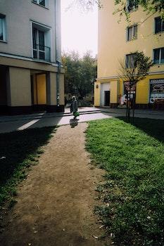 Free stock photo of people, sun, path, grass