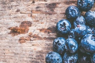 Close-Up Photography of Blueberries