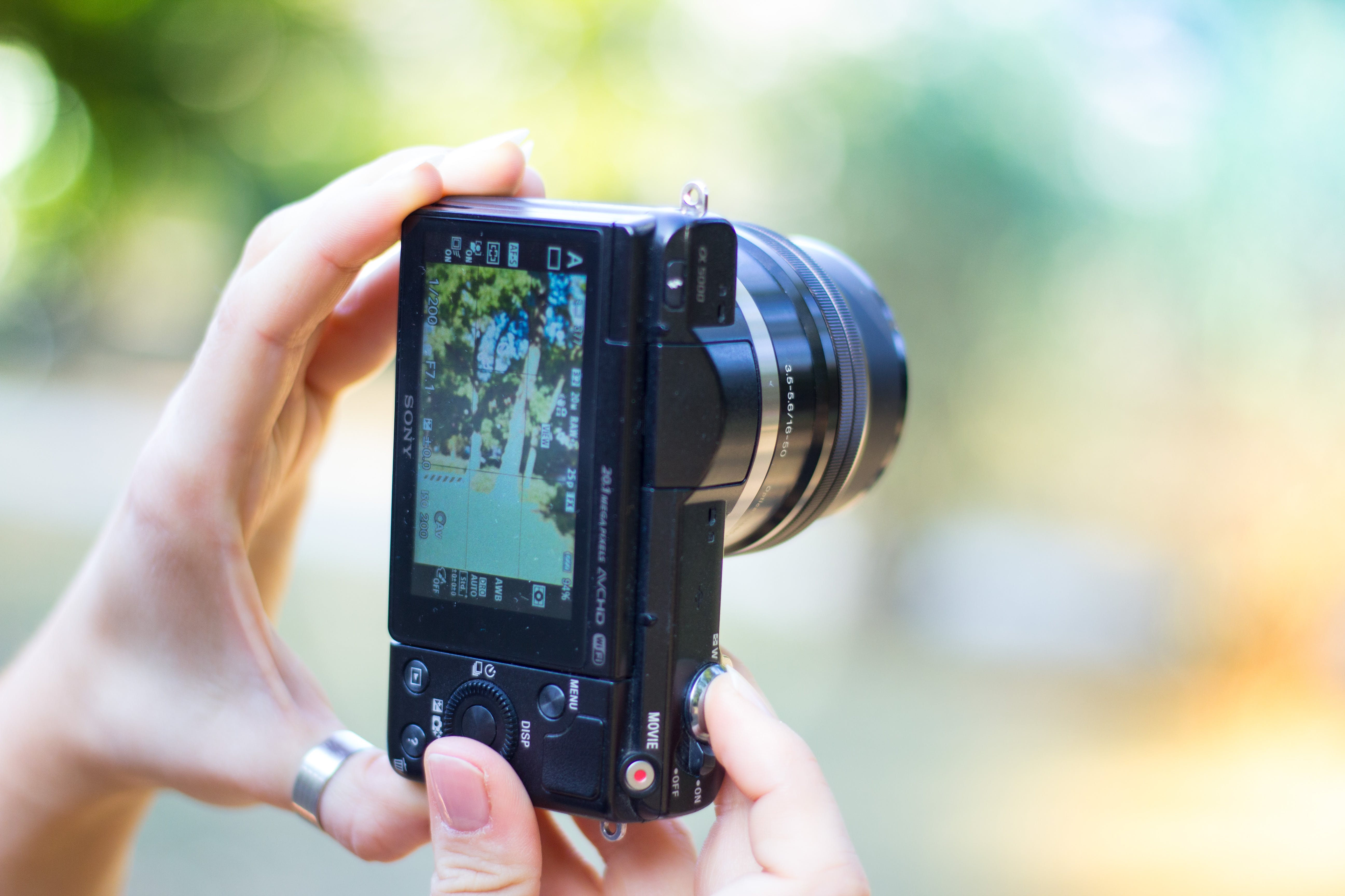 Person Holding Black Point-and-shoot Camera