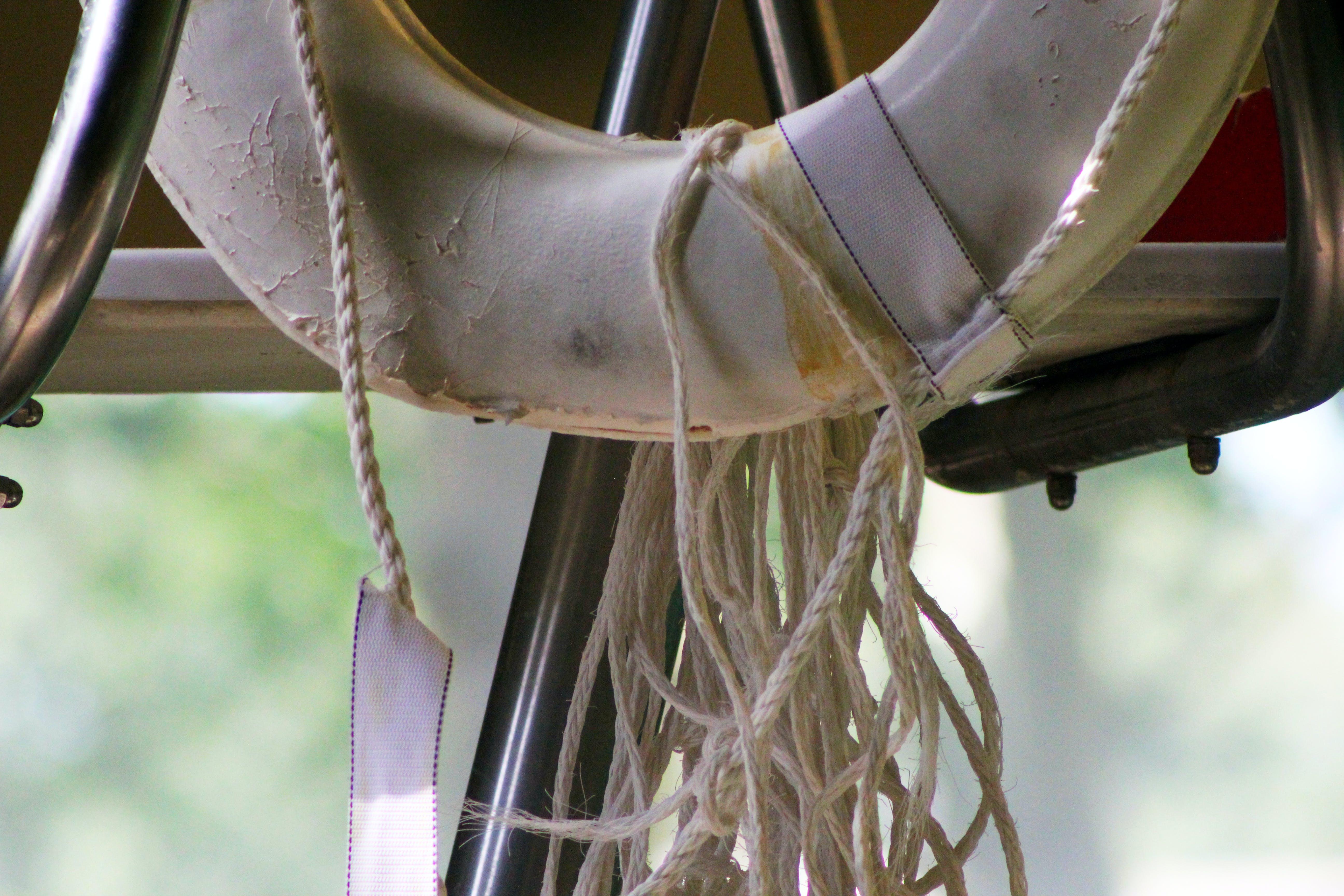 Free stock photo of cord, pool