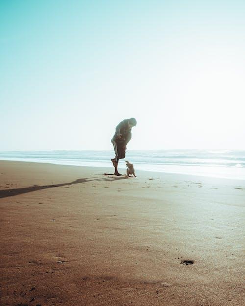 Person in Gray Hoodie Walking on Beach