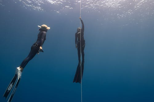 Free stock photo of adventure, diver, diving