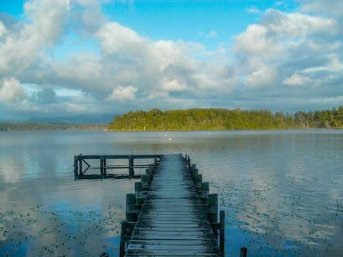 Free stock photo of calm, jetty, nature, water