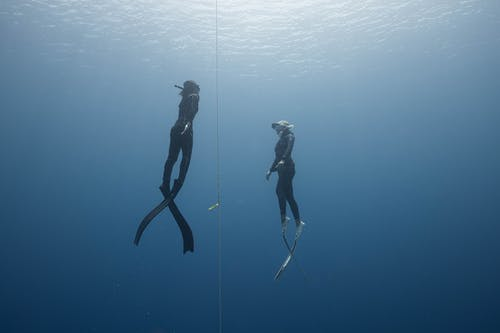 2 Person in Black Wetsuit in Water