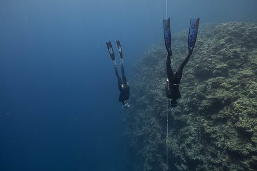 Person in Black Wetsuit in Diving Suit Under Water