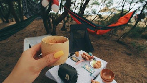 Fotobanka sbezplatnými fotkami na tému atraktívny, čaj, cestovať