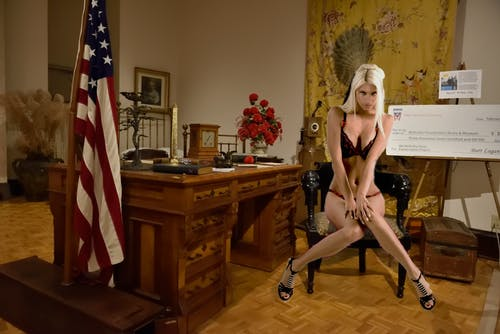 Free stock photo of babe, blond, hot, oval office