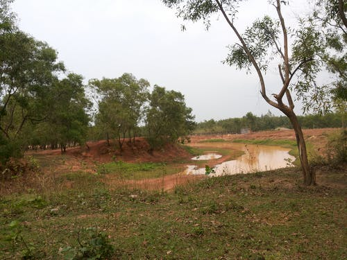 Free stock photo of nature, village