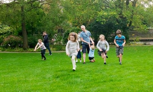 Free stock photo of children, green, kids, park