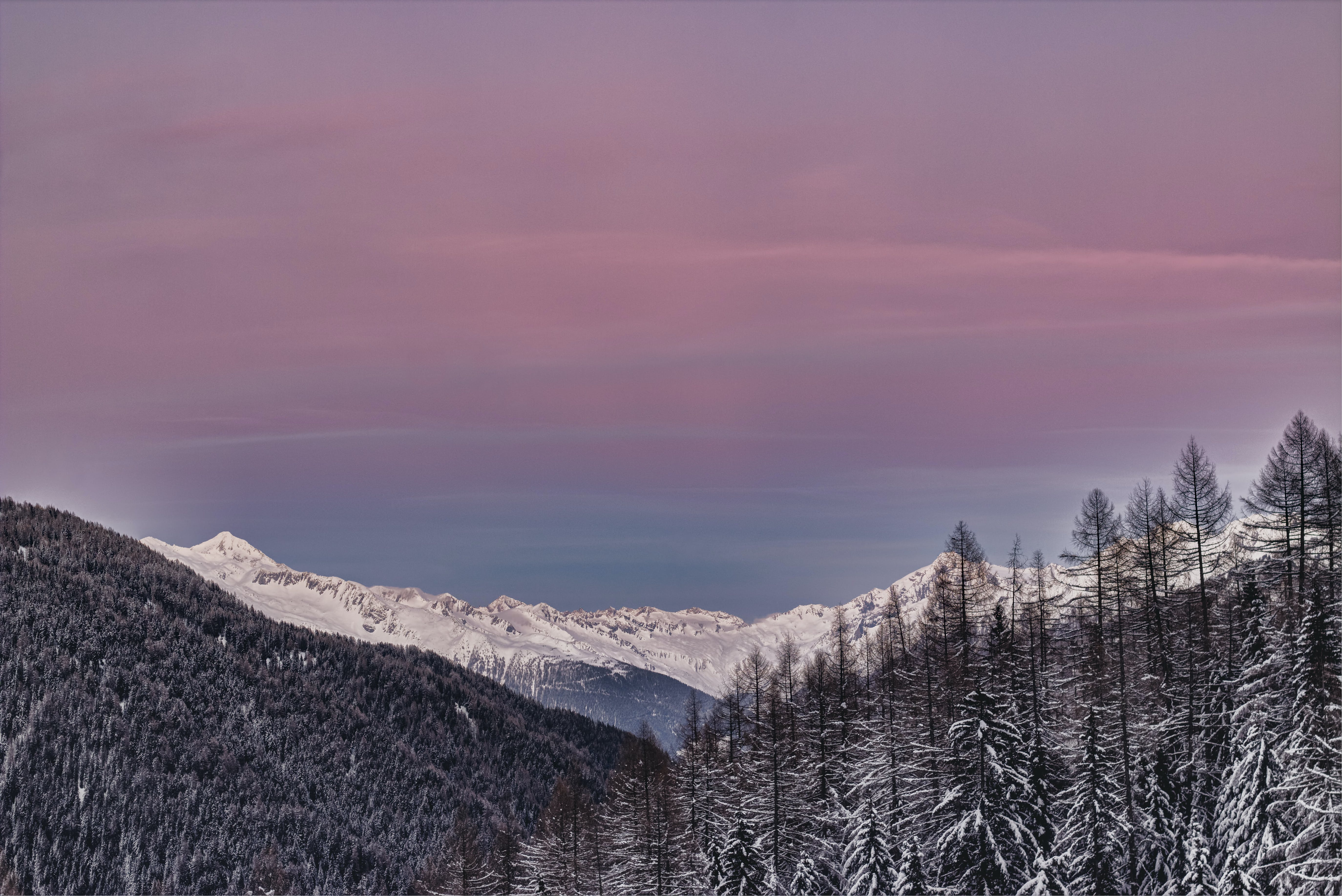 Photo of Mountains Covered with Snow and Surrounded with Trees