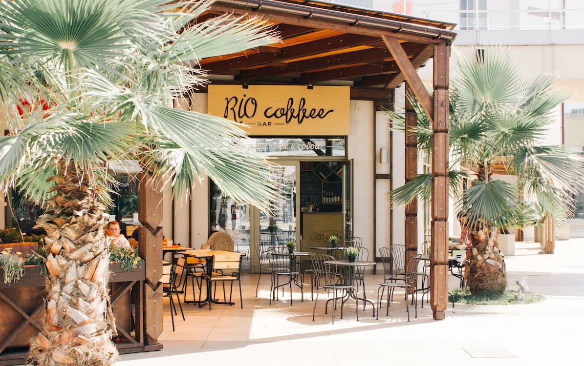 alberi, bar, caffetteria