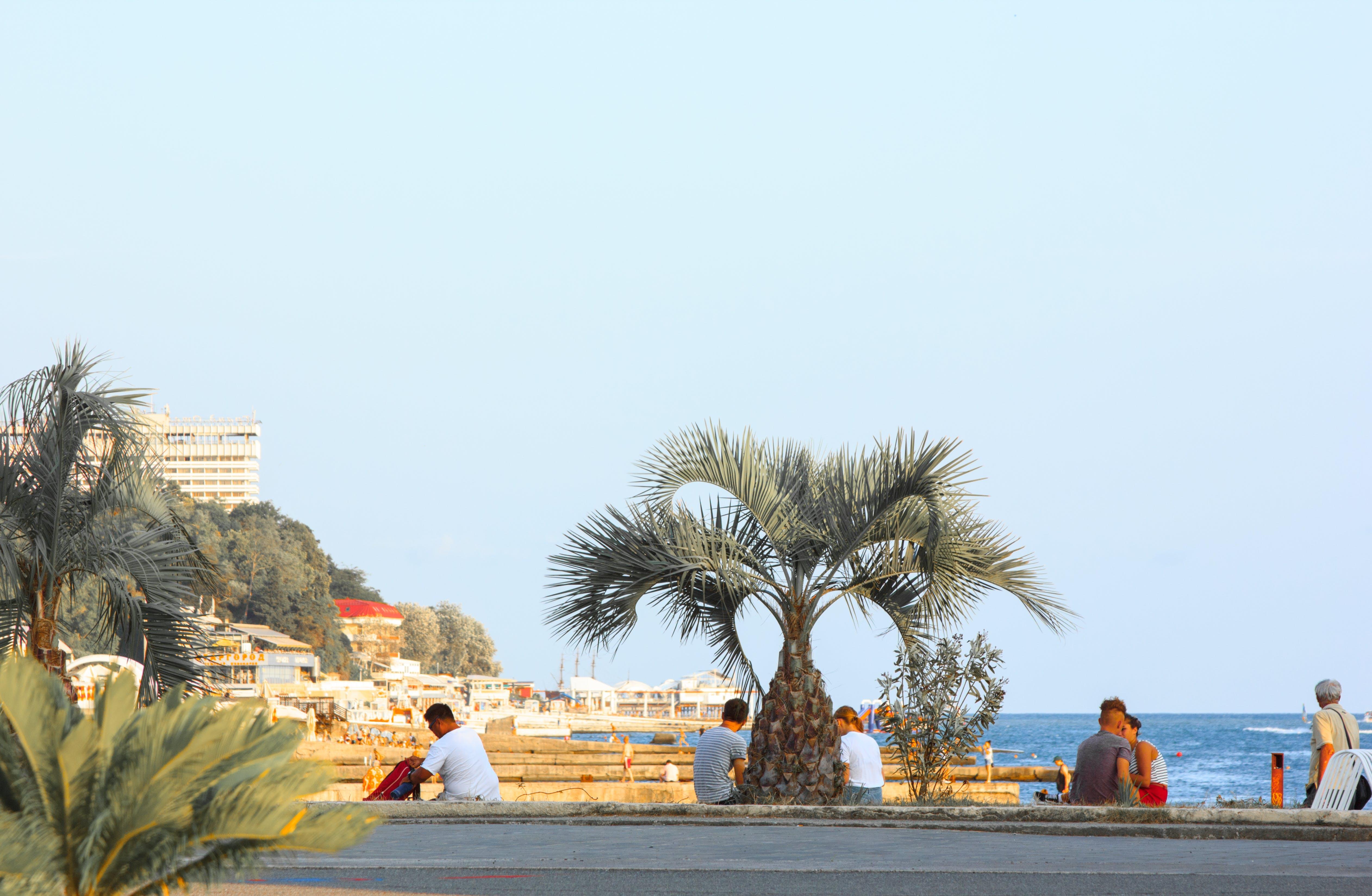 Free stock photo of sea, beach, bay, sun