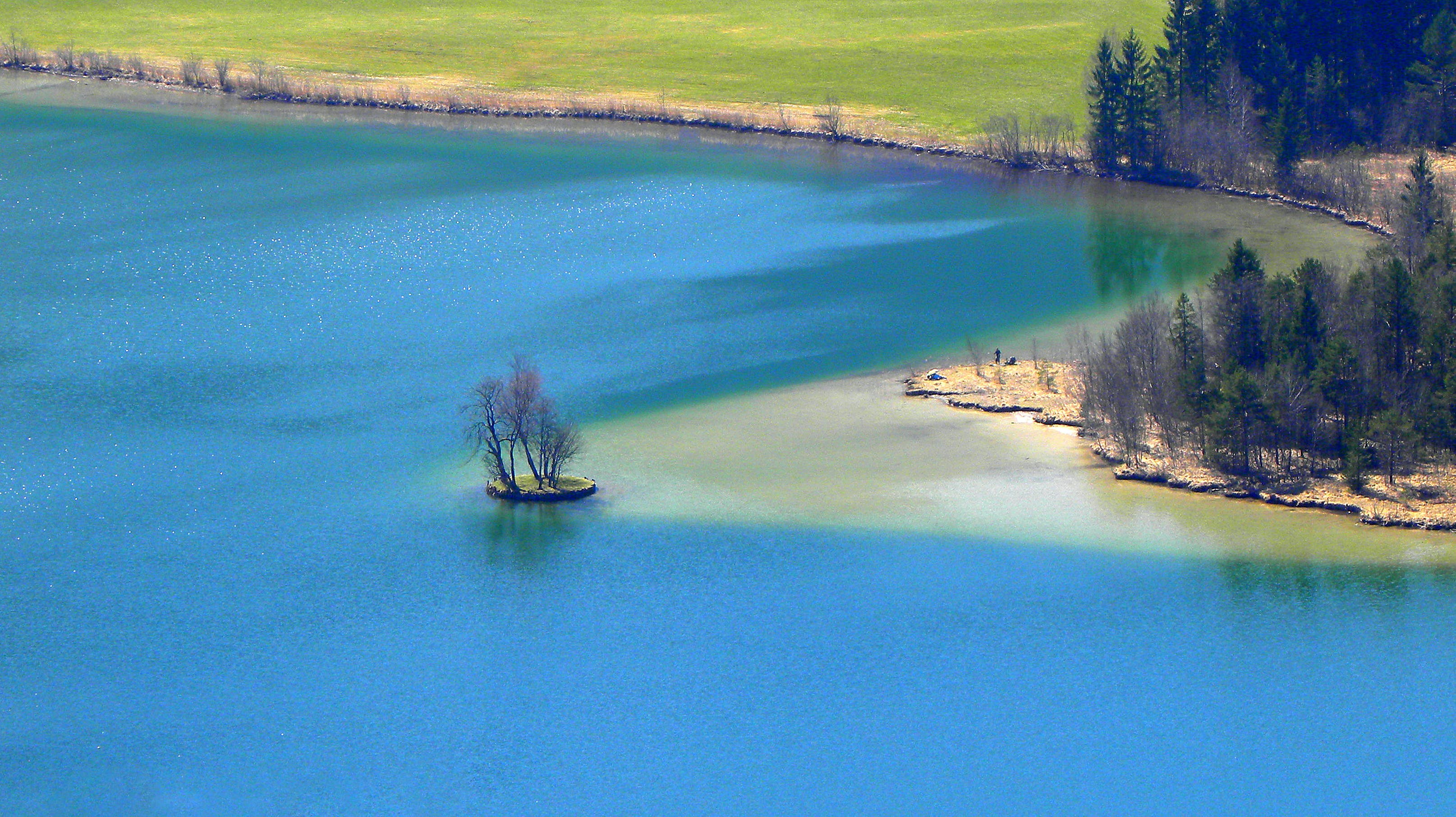 Areal View Of Body Of Water And Trees