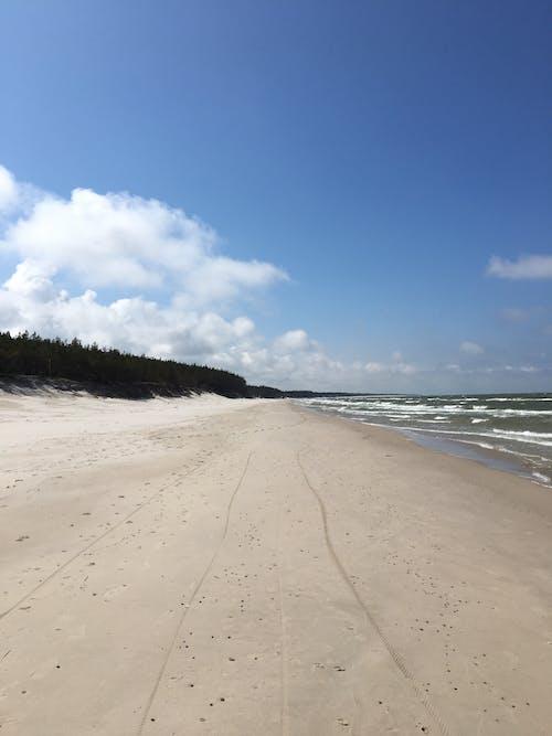 White Sand Beach Under Blue Sky