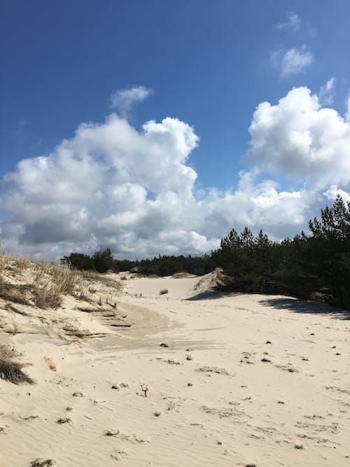 Free stock photo of alone, beach, beautiful landscape