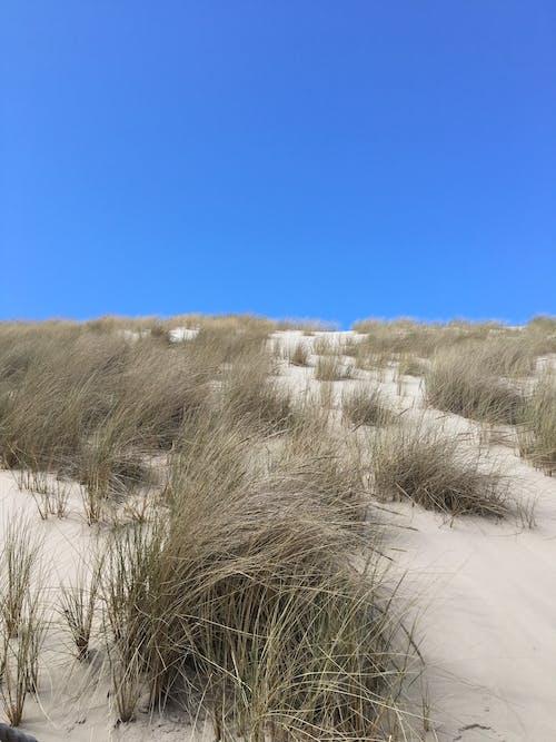 Free stock photo of arid, background, beautiful landscape