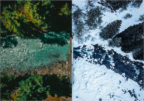 Free stock photo of drone shot, greenery, snow
