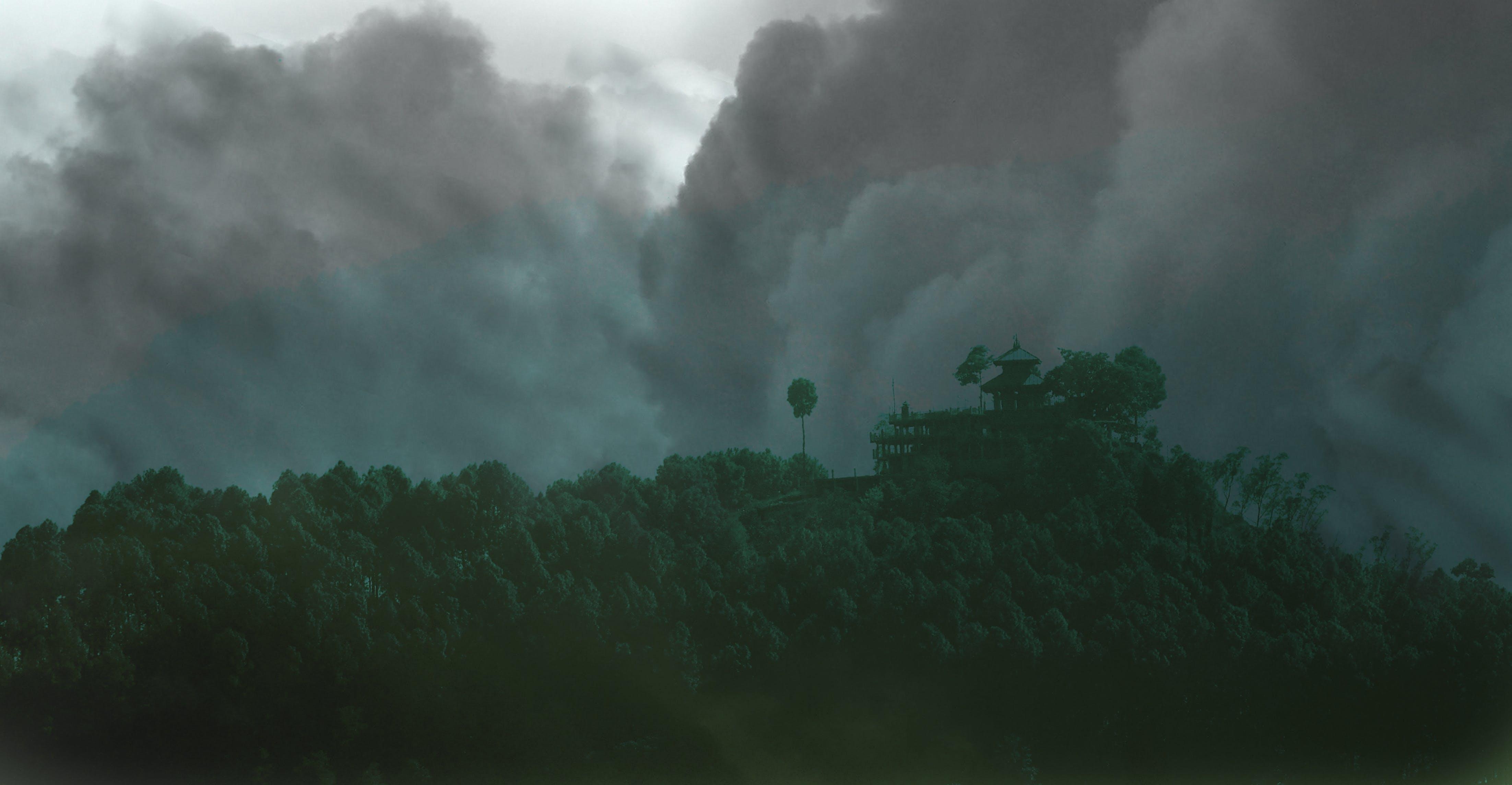 açık, afet, ağaçlar, bulutlar içeren Ücretsiz stok fotoğraf