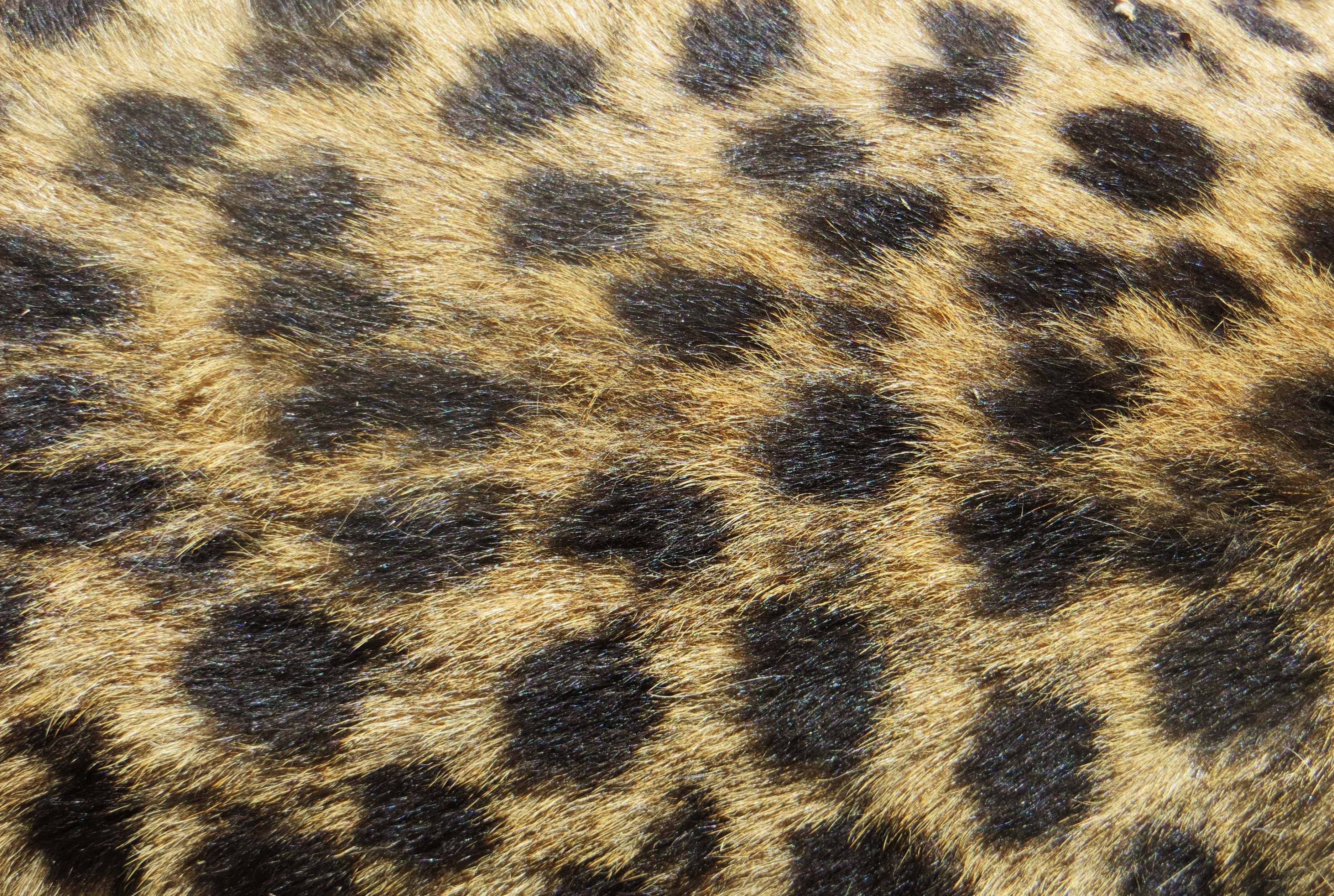Brown and Black Textile