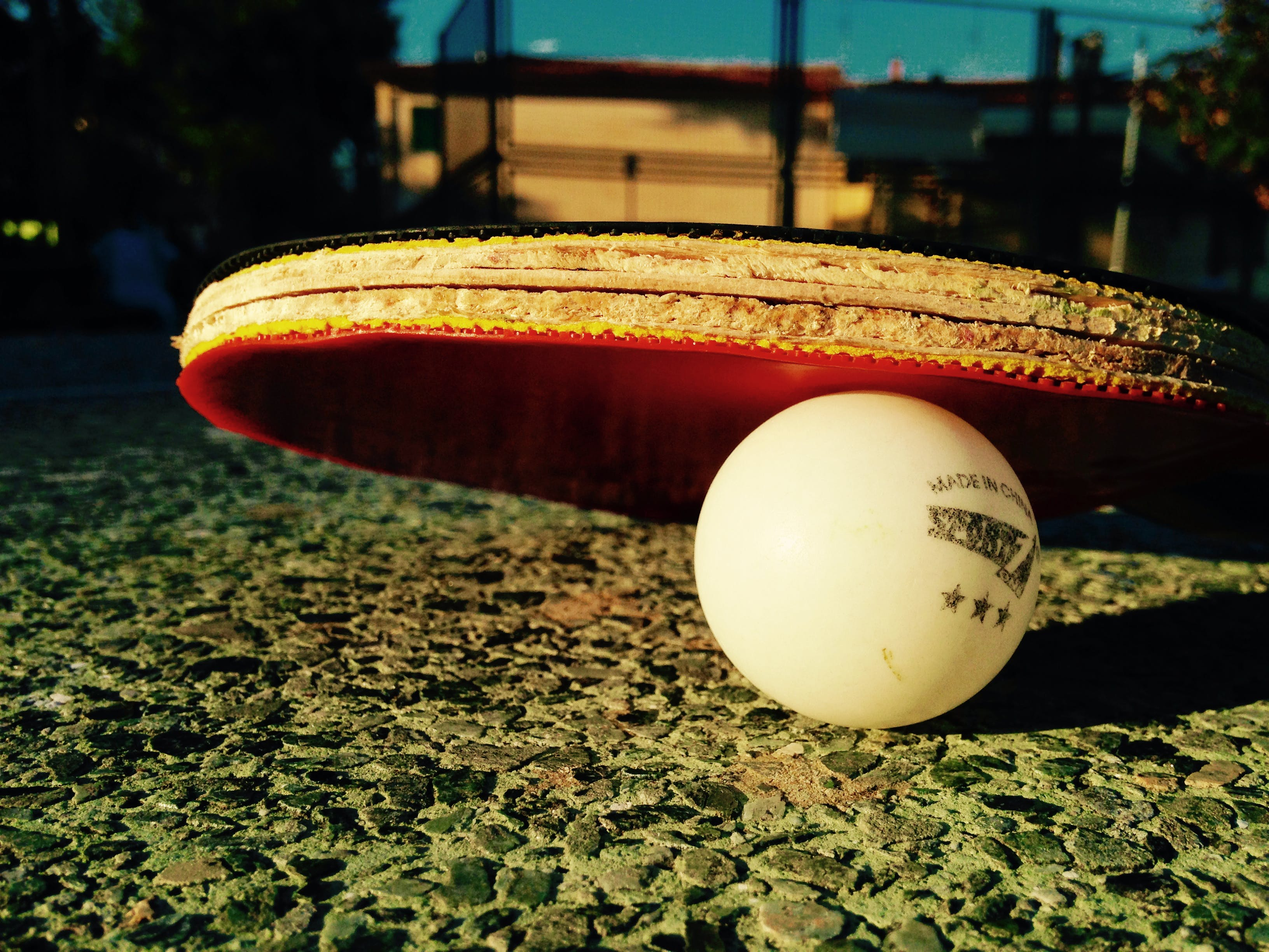 Free stock photo of casentino, justifyyourlove, ping pong, table tennis