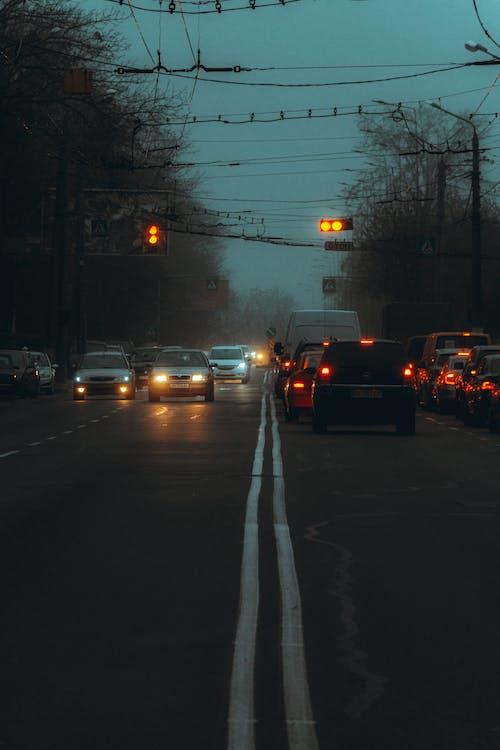Foto profissional grátis de automóveis, carros, estrada