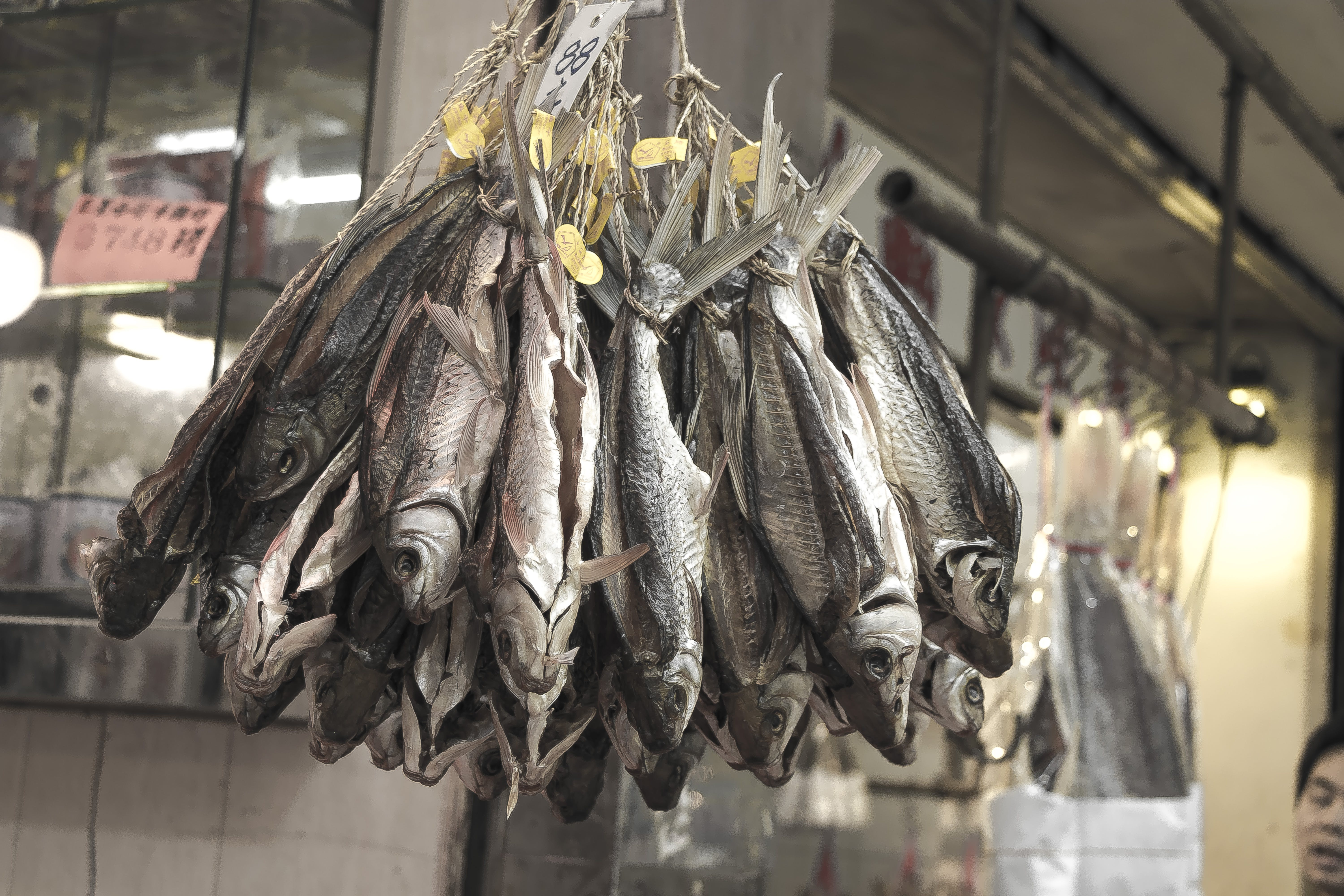 Free stock photo of asia, asian food, dry fish, fish
