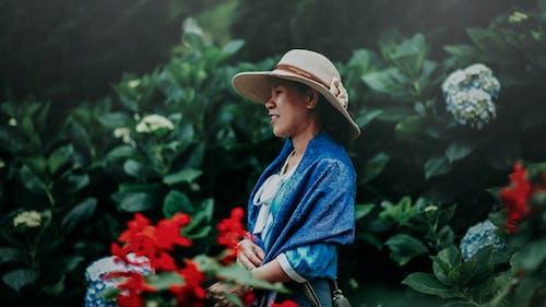 Gratis lagerfoto af blomster, farver, have, kvinde