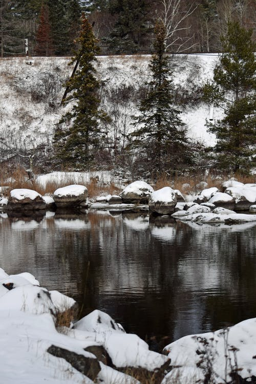 Free stock photo of snow, water, winter