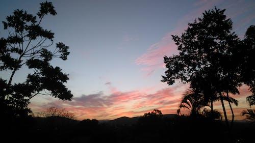 Free stock photo of evening, nature, sky