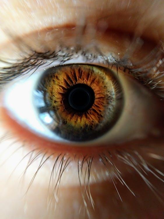 Nahaufnahmefoto Des Menschlichen Auges