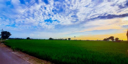 Free stock photo of clouds in the sky, grewal, nature landscape