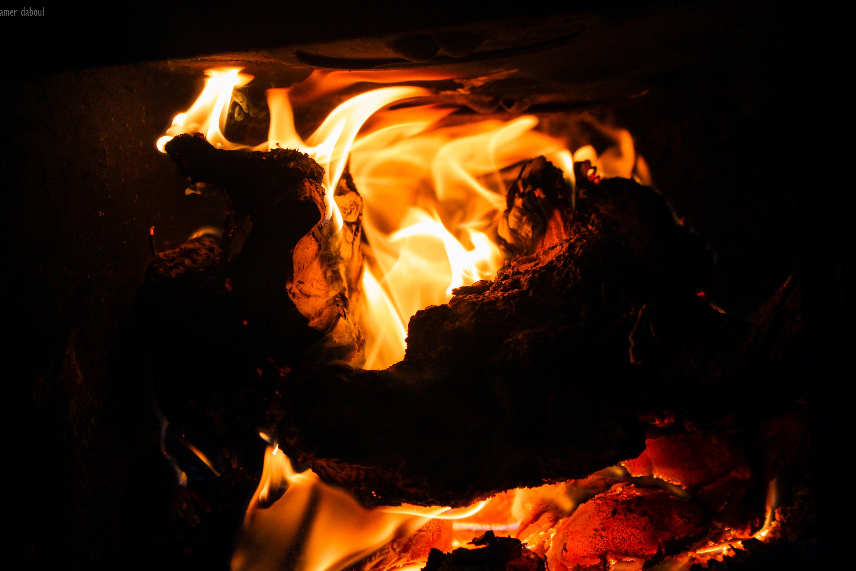 Photo of Firewood