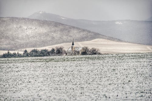 Foto stok gratis bangunan, berkabut, bidang, dingin