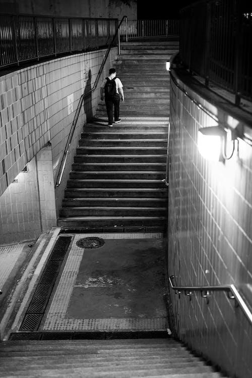グレースケール, ストリート写真, ひと続きの階段の無料の写真素材