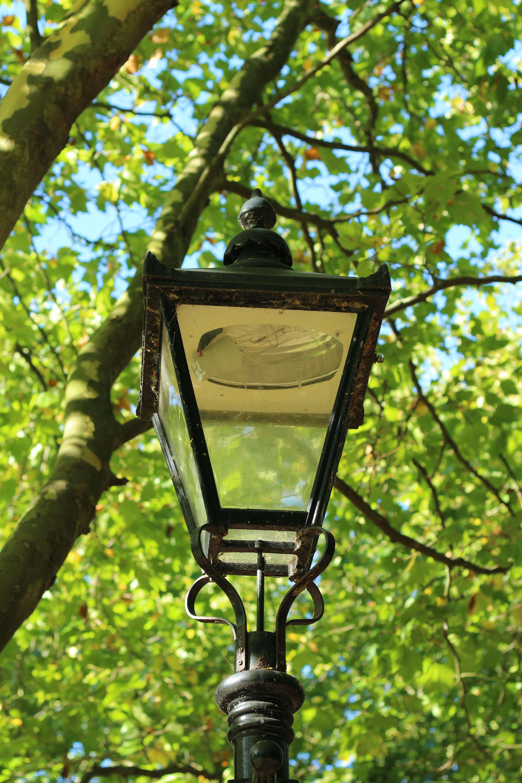 Free stock photo of light, park, street lamp